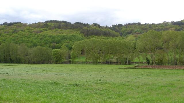 Mondoñedo (Galicia)