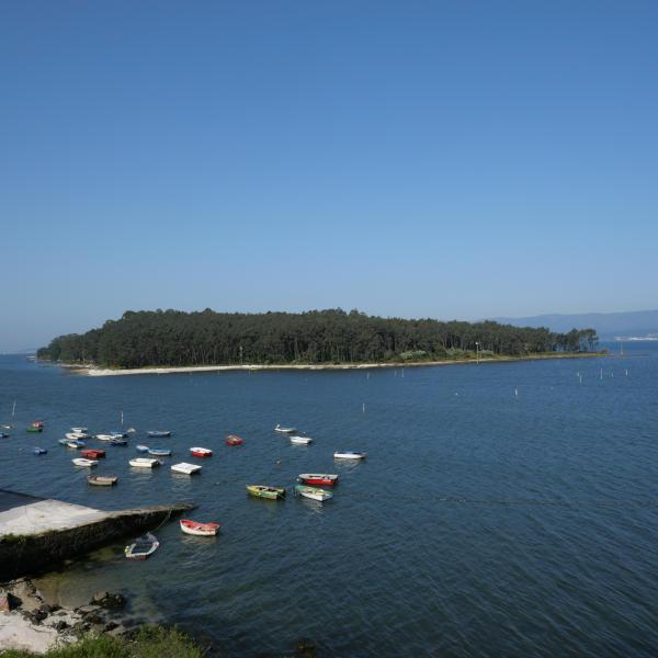 Illa Cortegada