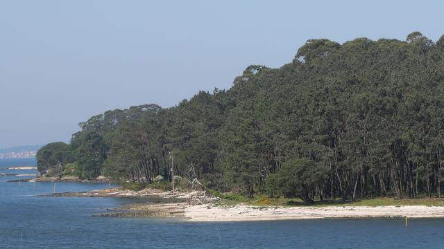 Illa Cortegada (Galicia)