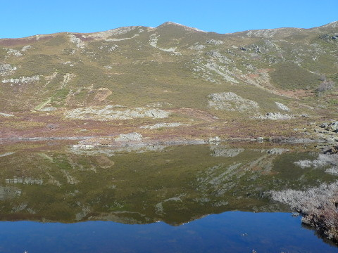 Pico de Lagos (Galicia)