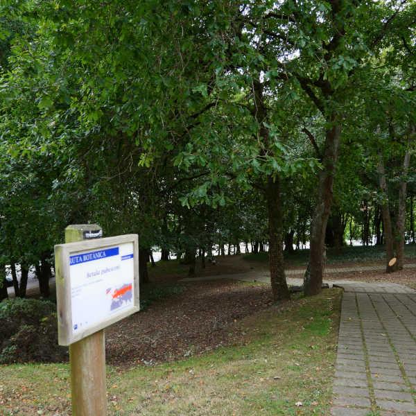 Ruta Botánica polo Campus Universitario de Lugo