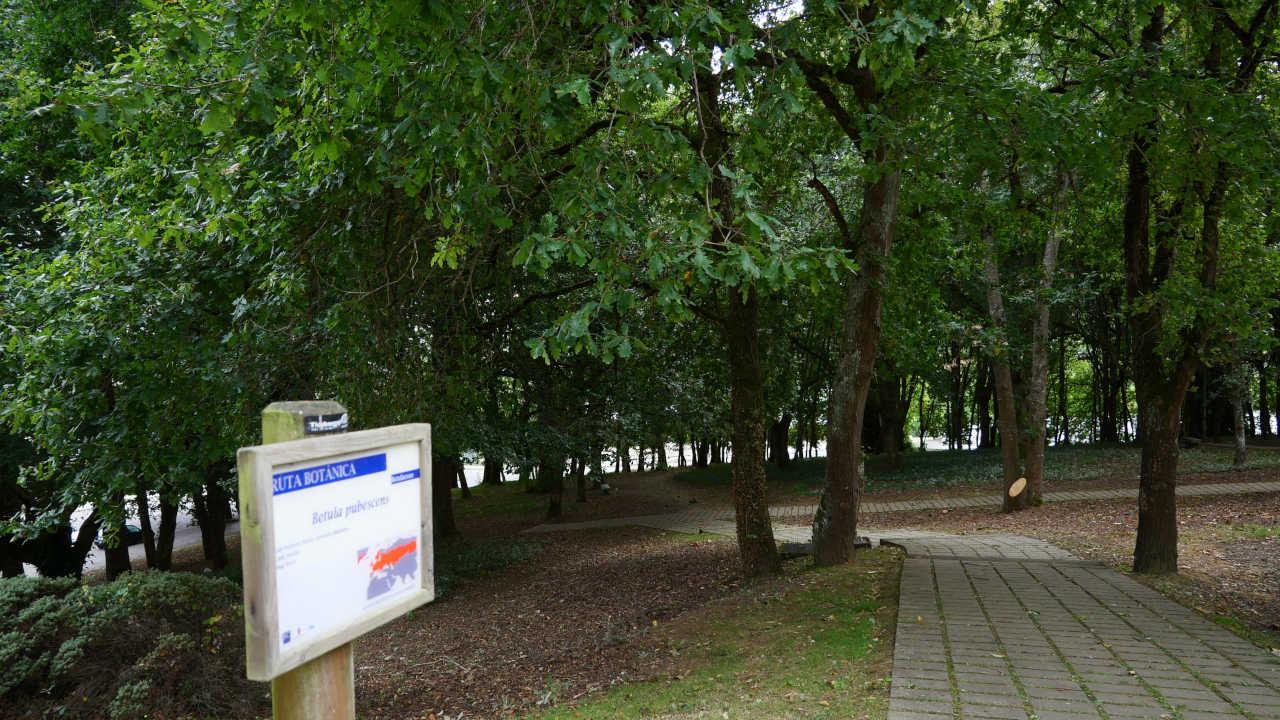 Ruta Botánica polo Campus Universitario de Lugo (Félix González)