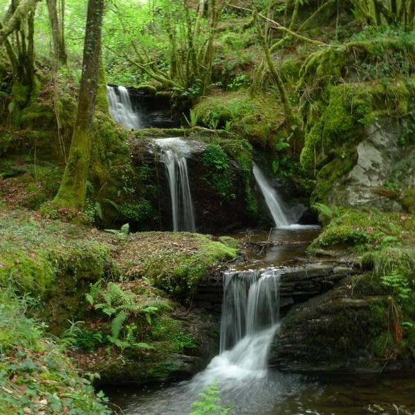 Sendeiro de Quintá-Río Donsal