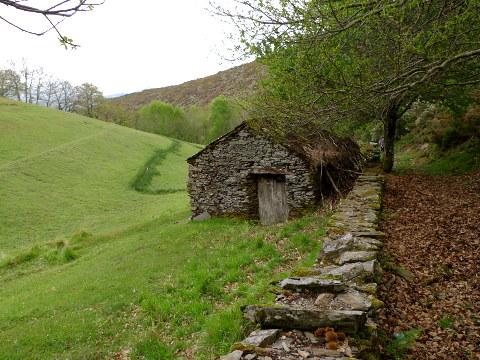 Sendeiro de Quintá-Río Donsal (Galicia)