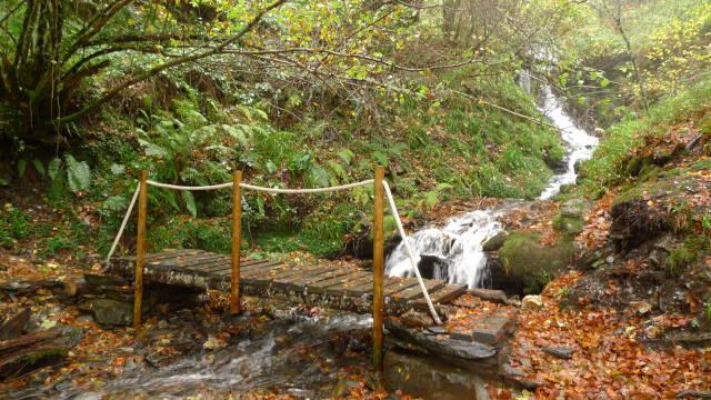 Aula da Natureza de Moreda (Galicia)